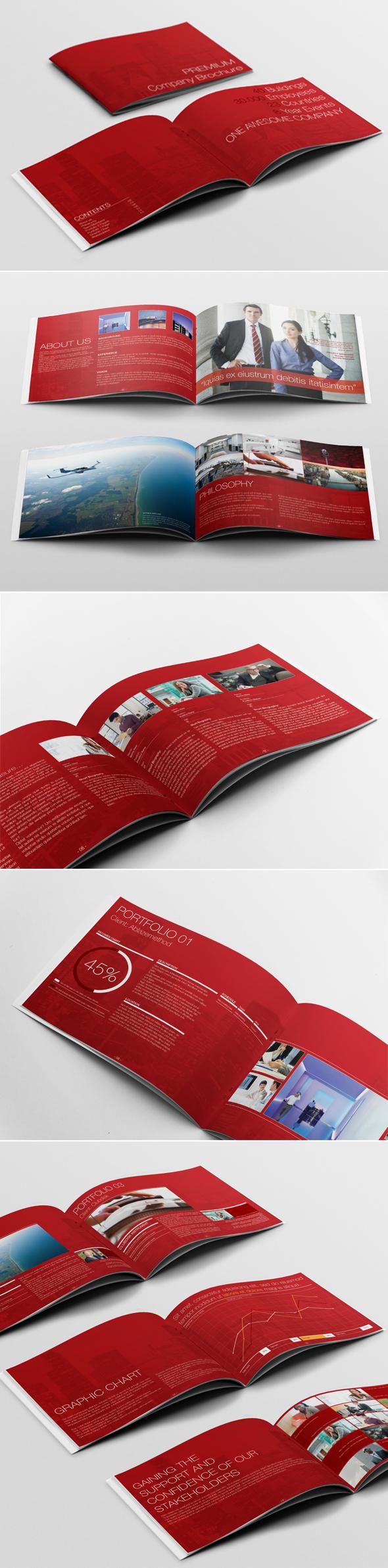 Premium Corporate Brochure Template