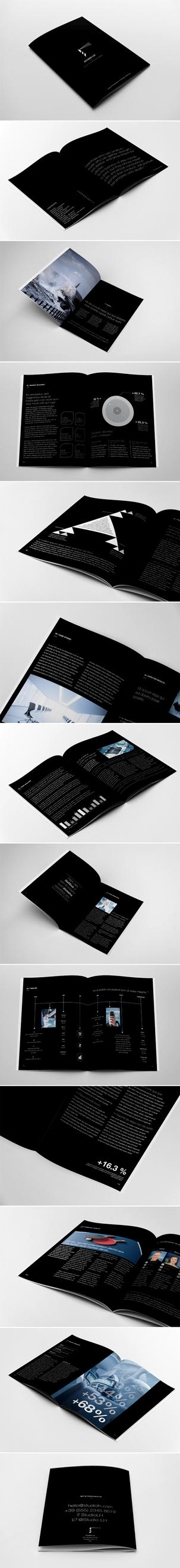 Annual Report Brochure Template by andre2886