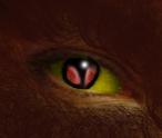 Werewolf Eye by goddesstll