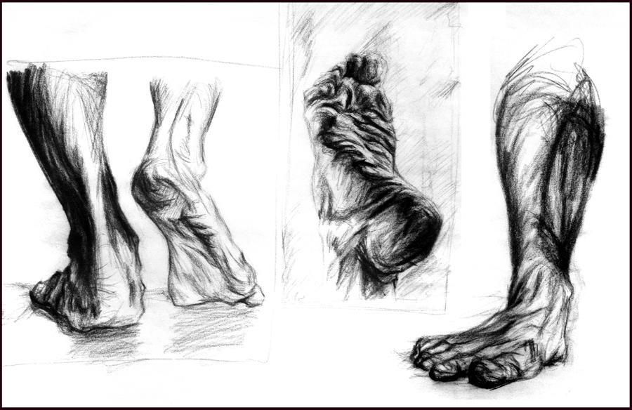 Anatomy Sketch by JenniferWeiler