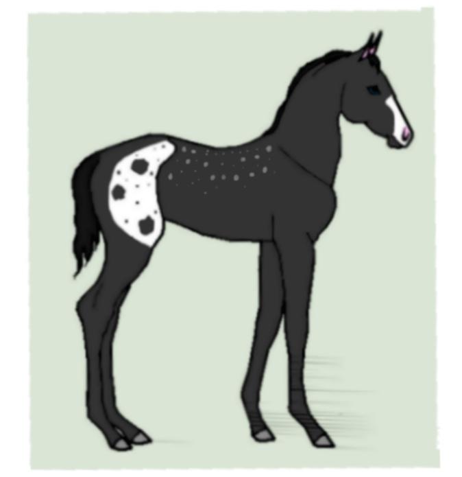 Horse Ship It #22 - Ashanti x Celina by mkayswritings
