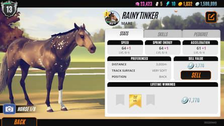 Rainy Tinker