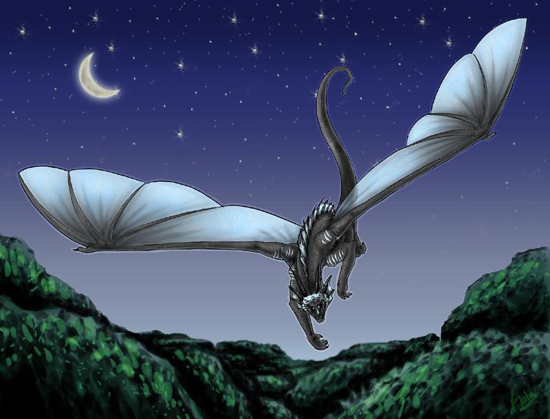 Nighttime Flight by Kata