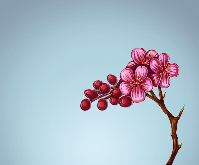 small flower by kata on deviantart, Beautiful flower