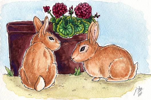 Bunny Watercolor