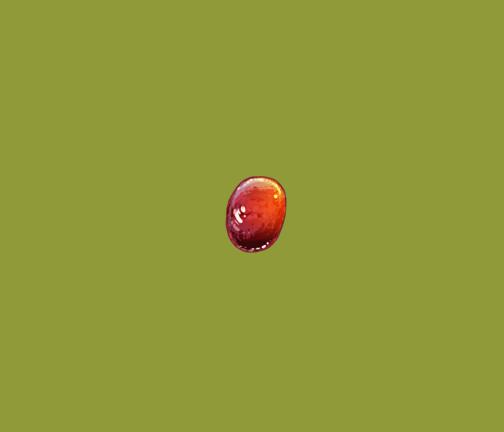 Single Grape by Kata