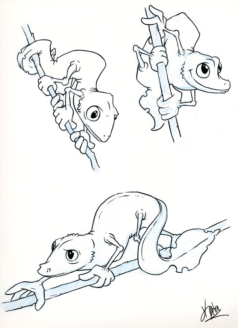 Satanic Leaf Tailed Gecko By Kata On DeviantArt