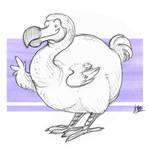 Critter Jam: Dodo