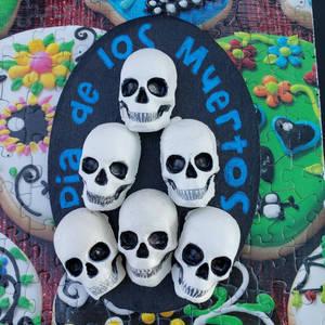 skulls magnet