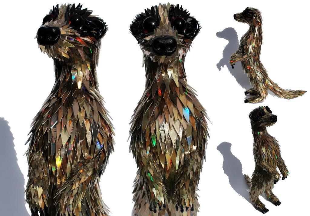 Meerkat by SeanAvery