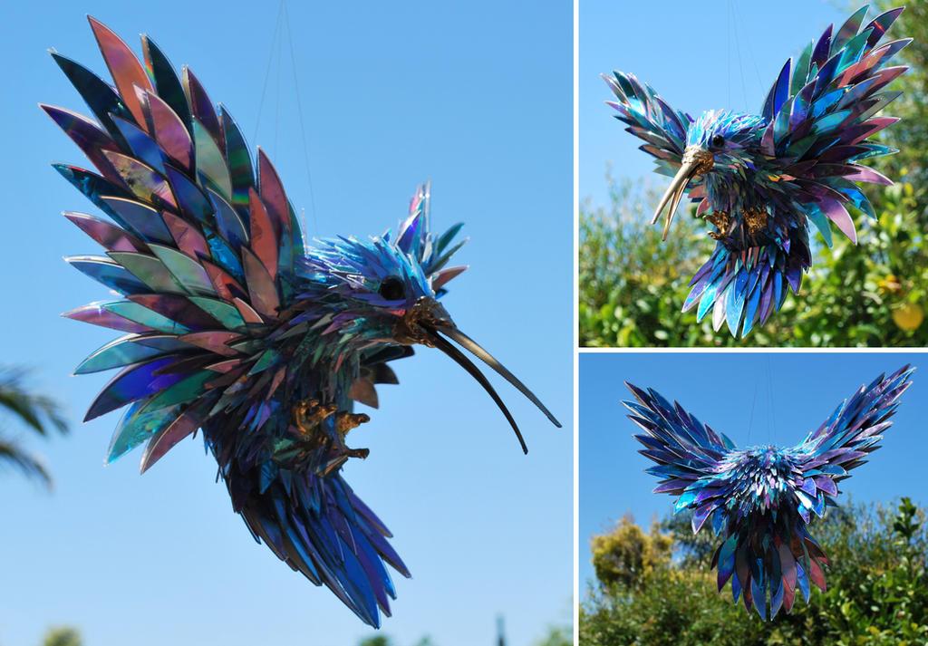 Hummingbird 8 by SeanAvery
