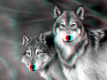 Wolves 3-D conversion