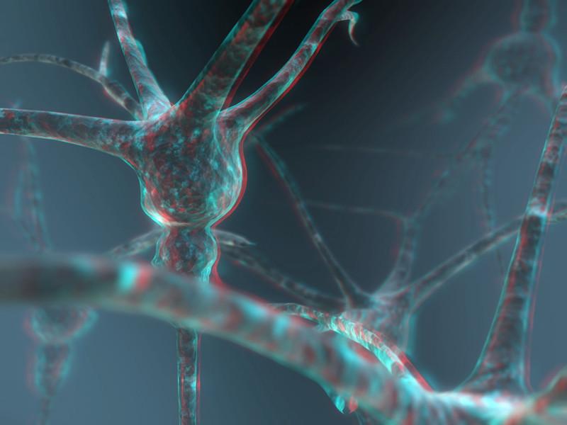 Neuron 3-D conversion