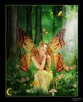 A Fairy's Garden