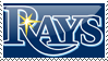 Tampa Bay Rays Stamp 1 by JayJaxon