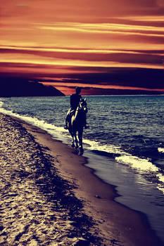 Four Horseshoes