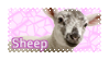 Sheep by KiwiNiorin