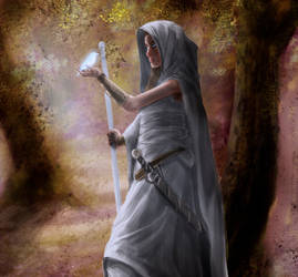 Ars Magica: Diedne in the Forest