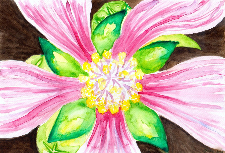 Flower Close-up by LoVeras