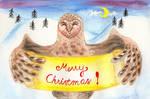 Barn Owl And Snowy Hills