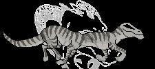 Coar Colored Run Animation by Kiwi-Fox3
