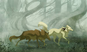 Stalking in the Fog
