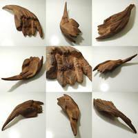 long tail-ox horn-bat wing-Dragon King Sprinting