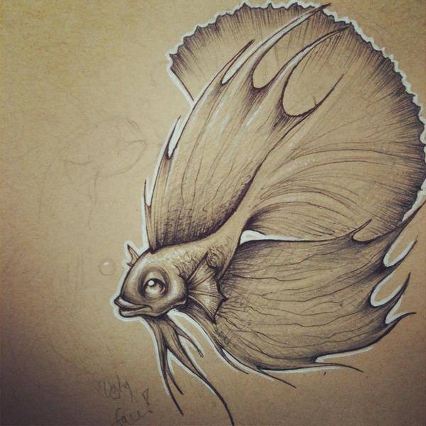 Betta Fish by JordanMendenhall on DeviantArt  Betta Fish Drawings