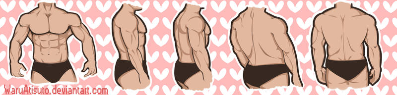 Muscle Chest Reference by Kawaaaai