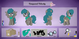 Vanguard Velocity - Ref Sheet COMM by RaspberryStudios