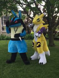 Lucario and Renamon Anime North 2017 by pokemonmanic3595