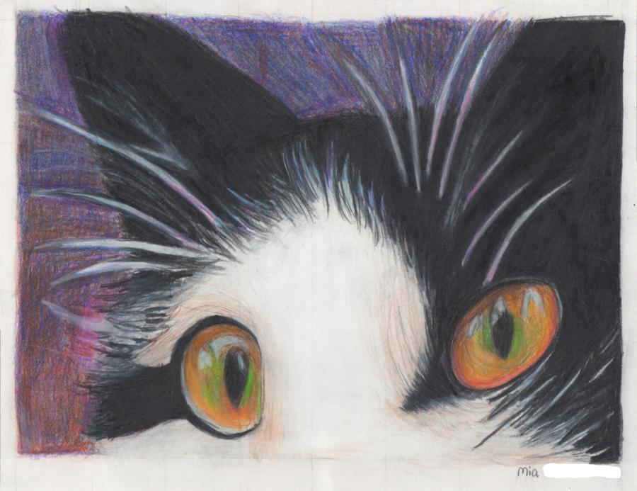 Cat by CardboardAntlers