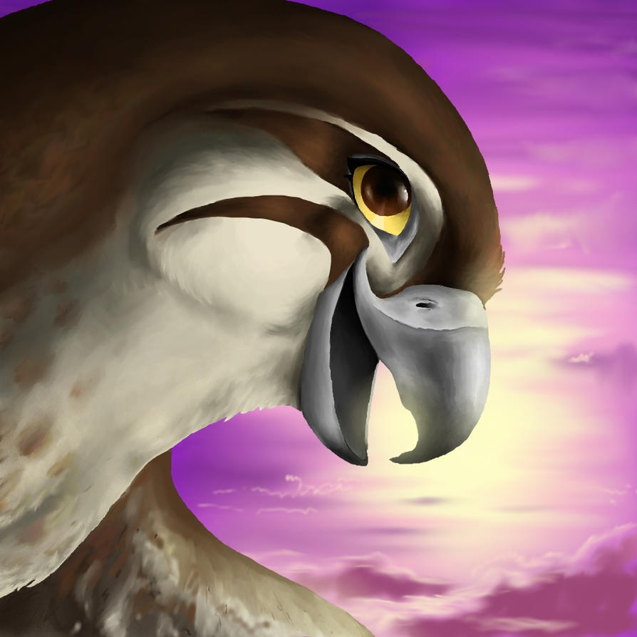 FalconArt - Updated Profile by FalconArte
