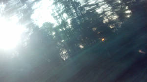 blured twilight