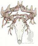 Deer Skull with vines - color