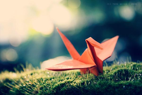 the flight of the crane by thresca
