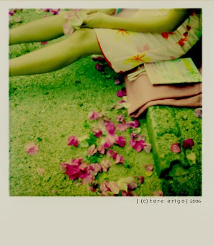 reading dreams-- by thresca