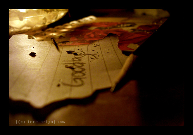 http://fc53.deviantart.com/fs11/i/2006/188/2/9/goodbye___by_thresca.png