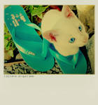 blue-- by thresca