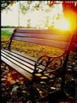 silent solitude..