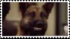Angie Tribeca: Hoffman Stamp by Tigerstar52