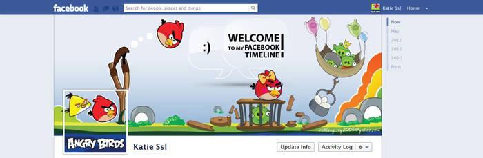 Angry Bird Facebook Timeline by sokleng