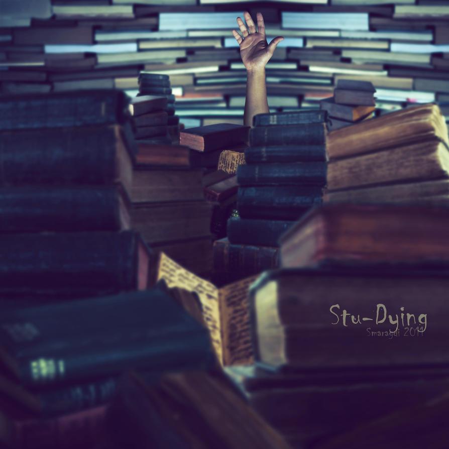 Stu-Dying by Smaragdi