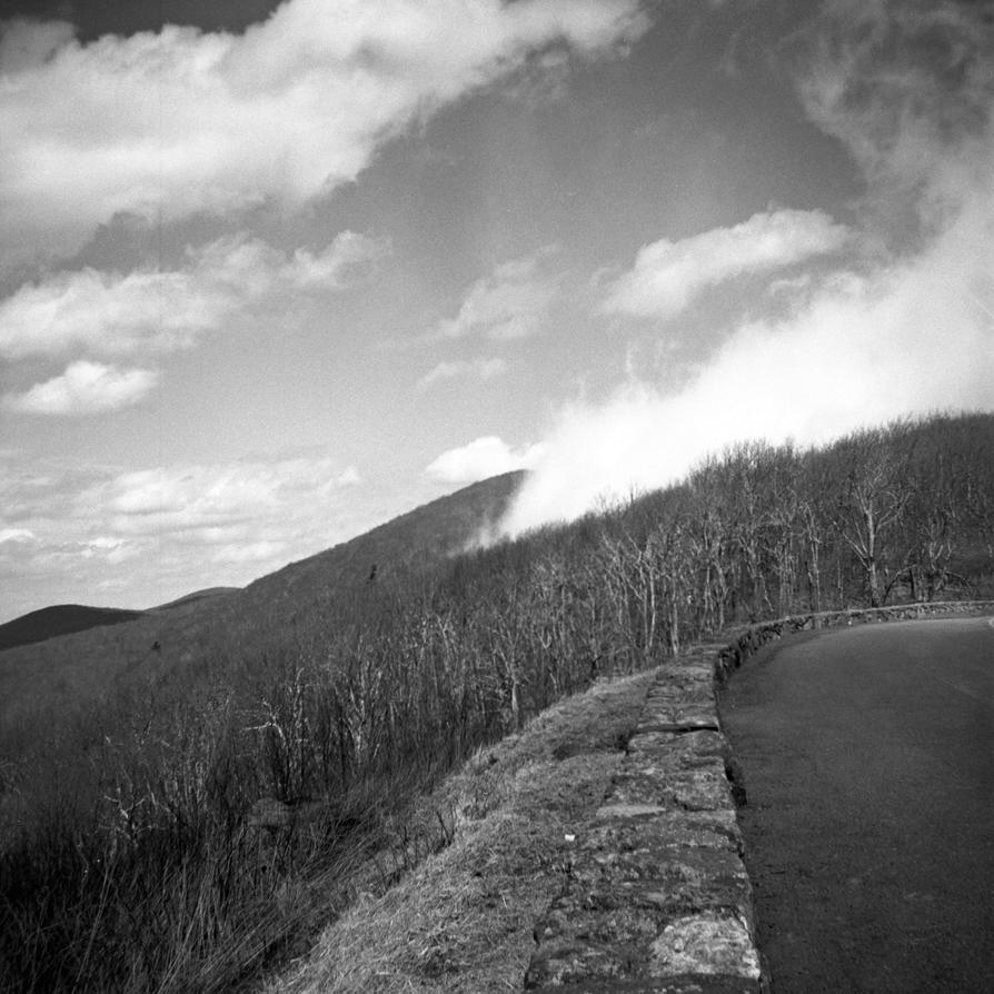 Cloud on Skyline Drive - Argus Seventy five by rdungan1918