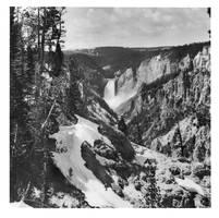 Yellowstone Falls, print 8x8 by rdungan1918