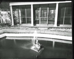 Fish Pond 8x10 pinhole