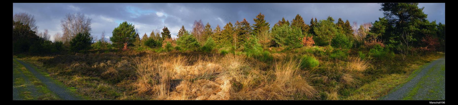 Nature Panorama by marschall196