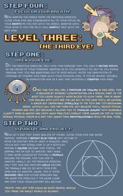 Psychonaut Field Manual PAGE 4