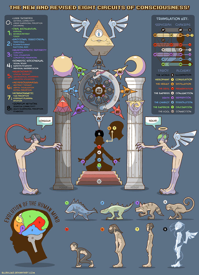 EIGHT CIRCUITS OF CONSCIOUSNESS by bluefluke