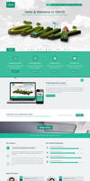 ONYX - Creative One Page Theme - SOLD